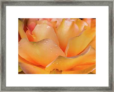 Framed Print featuring the photograph Heaven Scent by Karen Wiles