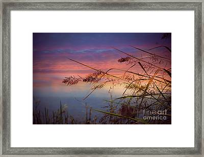Framed Print featuring the photograph Heavenly Bliss by Brenda Bostic