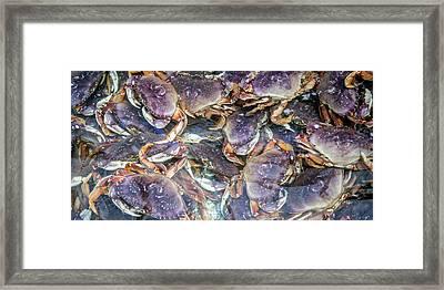 Heavenly Crabs Framed Print