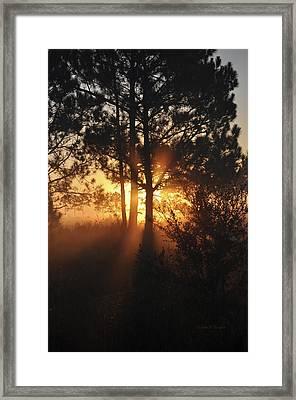 Heavenly Framed Print by John Knapko