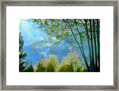 Heavenly Light II Framed Print