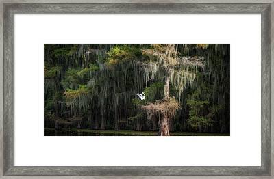 Heavenly Nest  Framed Print