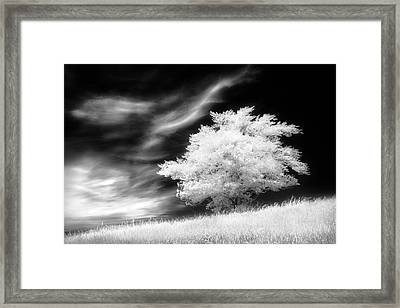Framed Print featuring the photograph Heavenly Places by Dan Jurak