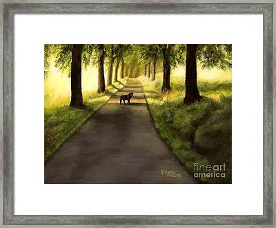 Serenity - Walk With Black Labrador Framed Print