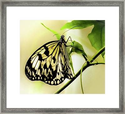 Framed Print featuring the photograph Heaven's Door Hath Opened by Karen Wiles