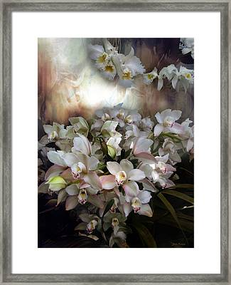 Framed Print featuring the photograph Heavens Orchids by John Rivera