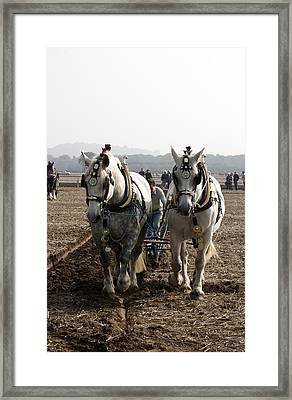 Heavy Horses Working Framed Print by Gerry Walden