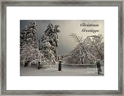 Heavy Laden Christmas Card Framed Print by Lois Bryan