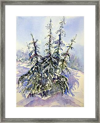 Heavy Snow In The Cascades Framed Print