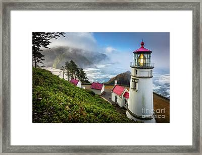 Heceta Fog Framed Print by Inge Johnsson