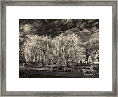 Heckscher Pond Long Island Framed Print by Jeff Breiman
