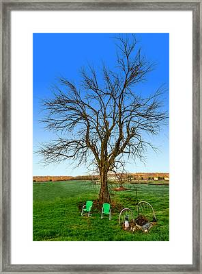 Hedge Apple Tree Framed Print