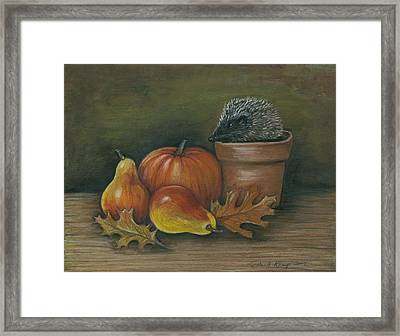 Hedgehog In Flower Pot Framed Print