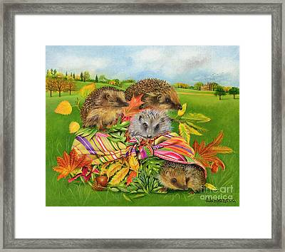 Hedgehogs Inside Scarf Framed Print by EB Watts