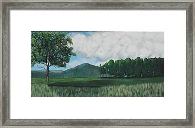 Hedgerow Framed Print by Candace Shockley