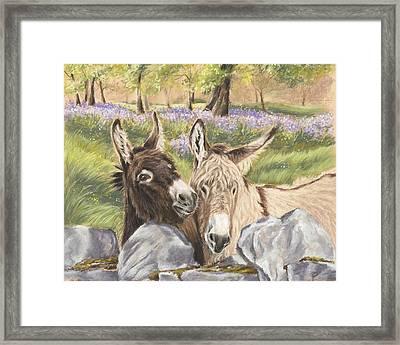 Hee Haw Framed Print by Vanda Luddy