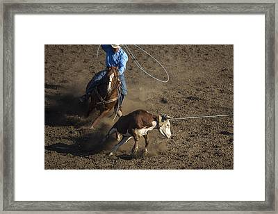 Framed Print featuring the photograph Heeler Up by Caitlyn  Grasso