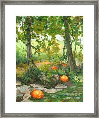 Heidi's Pumpkins Framed Print