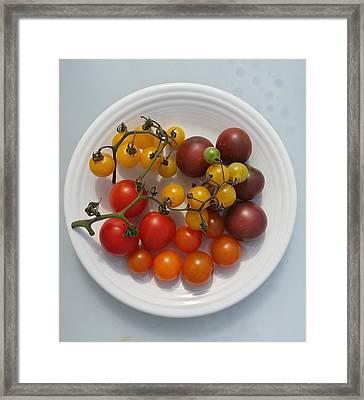Heirloom Tomato Pure Framed Print