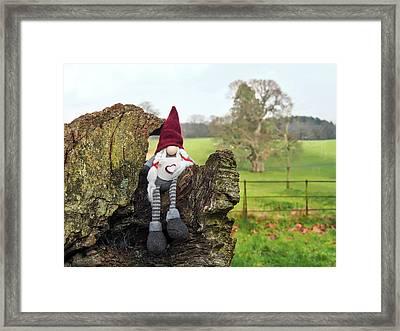 Helga In The Devon Countryside Framed Print by Susie Peek