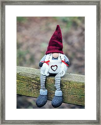 Helga On The Fence Framed Print by Susie Peek