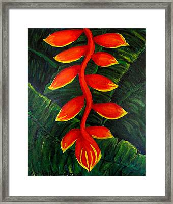 Heliconia Framed Print by Anthony LaRocca