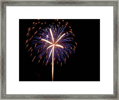 Hello 2014 Palmetto State Framed Print