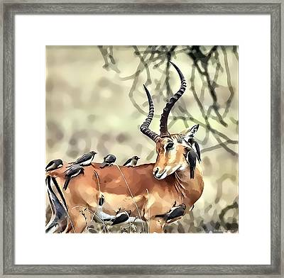 Hello Deer Framed Print by Kathy Tarochione