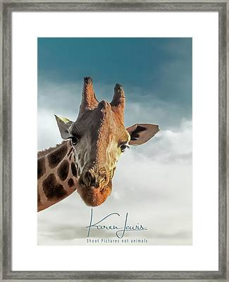 Framed Print featuring the photograph Hello Down There by Karen Lewis