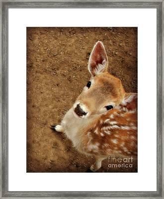 Hello Framed Print by Kristine Nora