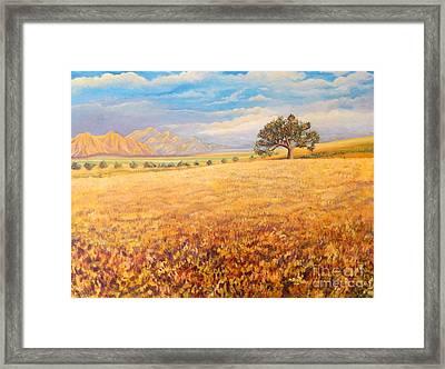 Hello Namibia Framed Print by Caroline Street