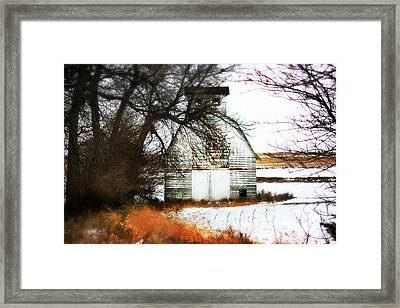 Hello There Framed Print by Julie Hamilton