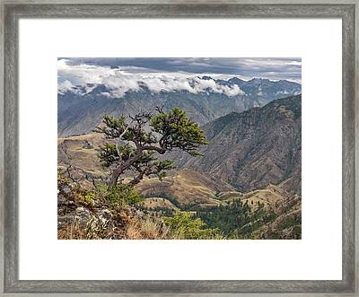 Hells Canyon Framed Print by Leland D Howard