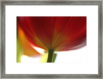 Help Is Here Framed Print by Amanda Barcon