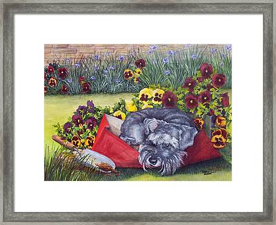 Helping The Gardener Framed Print