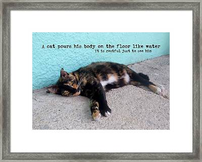 Hemingway Cat Quote Framed Print by JAMART Photography