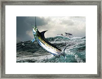 Hemingway's Marlin, The Old Man And The Sea, Fish On Framed Print