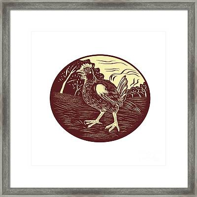 Hen Farm Oval Woodcut Framed Print