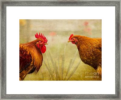 Hen Party Do You Come Here Often Framed Print by Linsey Williams