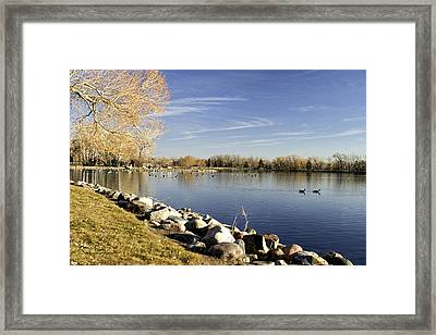 Henderson Lake Waiting For Winter Framed Print by Tom Buchanan