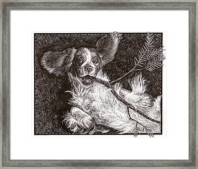 Henry Framed Print by Jennifer Harper