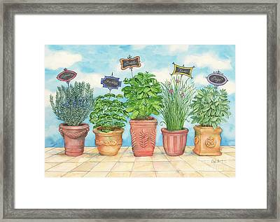 Herb Garden Framed Print by Paul Brent