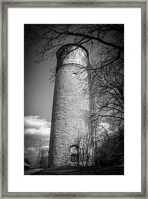 Framed Print featuring the photograph Herb Reffue by Viviana  Nadowski