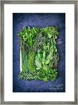 Herbilicious Framed Print by Tim Gainey