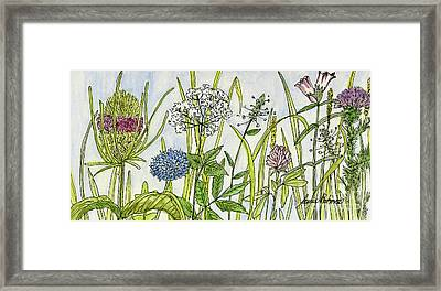 Herbs And Flowers Framed Print