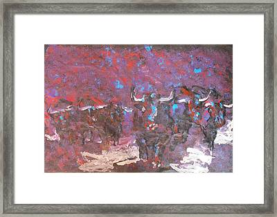 Herd Of Bulls Framed Print