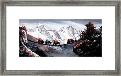 Herd Of Mountain Yaks Himalaya Framed Print