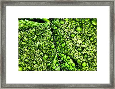 Here And There Framed Print by Karen Scovill