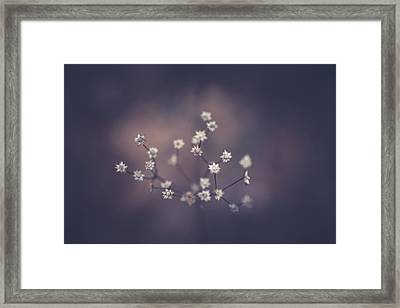 Framed Print featuring the photograph Here And There by Shane Holsclaw