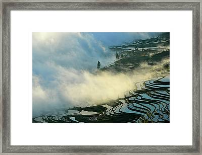 Here Comes The Mists Framed Print by Midori Chan